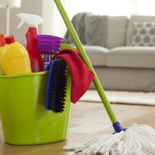 House Cleaner and Household Organizer Needed.