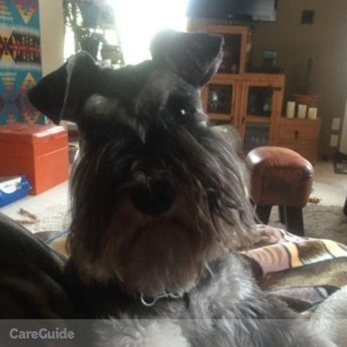Pet Care Provider Selena Lapp's Profile Picture