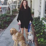 Loving, strong pet sitter, dog walker - ALL sizes and breeds