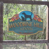 Woodbine Hill Kennel - Over 20 years of experience taking great care of your best friends!