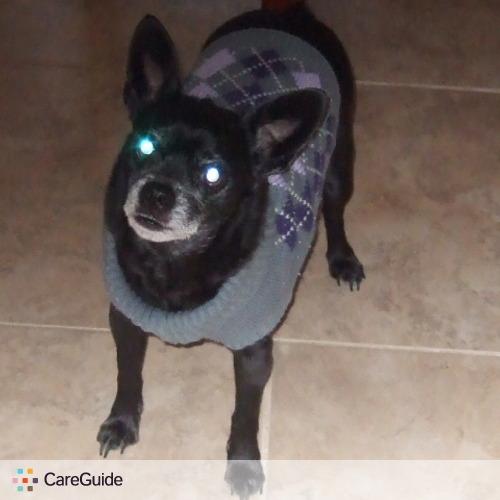 Pet Care Provider Wilma Terenna's Profile Picture