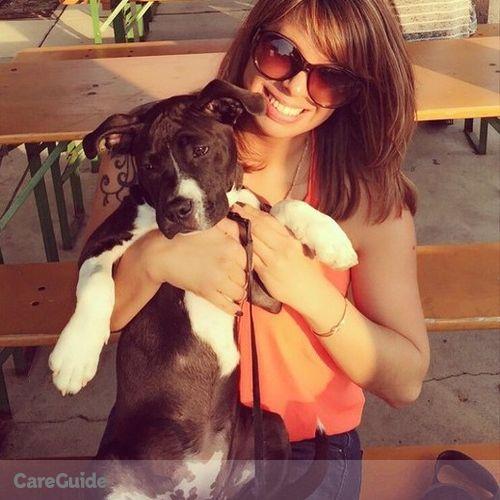 Pet Care Provider Rachel H's Profile Picture