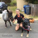 Dog Walker, Pet Sitter in Aptos