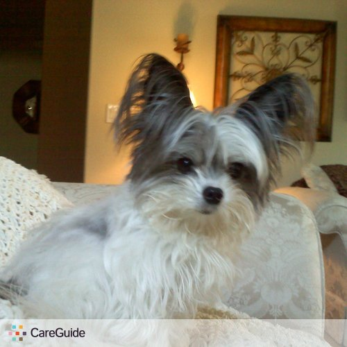 Pet Care Provider Karla Cano's Profile Picture
