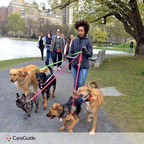 Pet Care Provider Deyanira Brown's Profile Picture