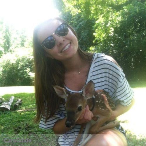 Pet Care Provider Melissa WIlliams's Profile Picture