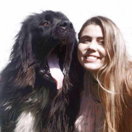 Pet Care Provider Sabrina A's Profile Picture