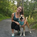 Available For a Dog Sitter Job in Bloomsburg, Pennsylvania