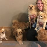 Dog Walker, Pet Sitter in Olympia