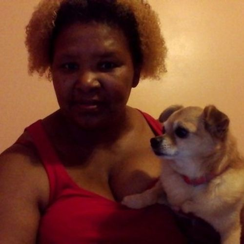 House Sitter Provider Desiree Lyles's Profile Picture