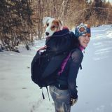 Available: Good House Sitting, pet sitting Provider in Ossipee