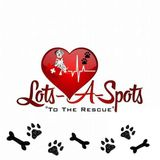Hammond/Ponchatoula pet care/sitting service provider . Many years of experience with dogs, cats, birds & fish.