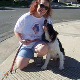 Dog Walker, Pet Sitter in Grass Valley