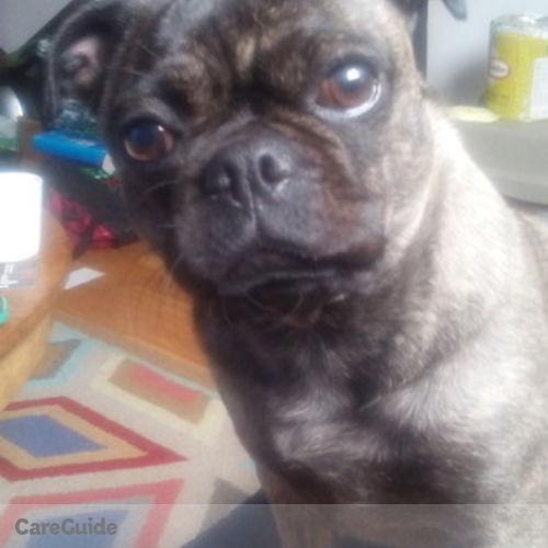 Pet Care Provider Carole Lyon's Profile Picture