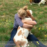Dog Walker, Pet Sitter in Ellensburg