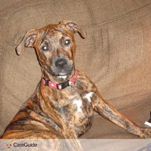 Pet Care Provider Christopher P's Profile Picture