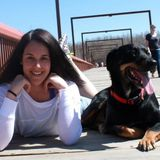 Talented Dog Trainer in Leduc