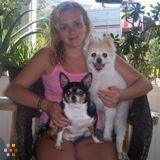Dog Walker, Pet Sitter in Broomall