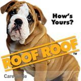 Professional Roofer; 15+ Years Experience in Residential & Flat Roofing; Wages Hard to Beat & Free Bids!