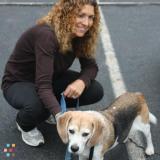 Dog Walker, Pet Sitter in Suffern