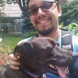 Dog walker and pet sitter!