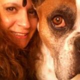 Cindi's Pet Care Services