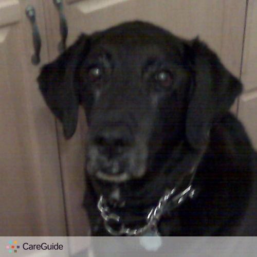Pet Care Provider Katherine Cornakovic's Profile Picture