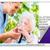 Dandelion health care L