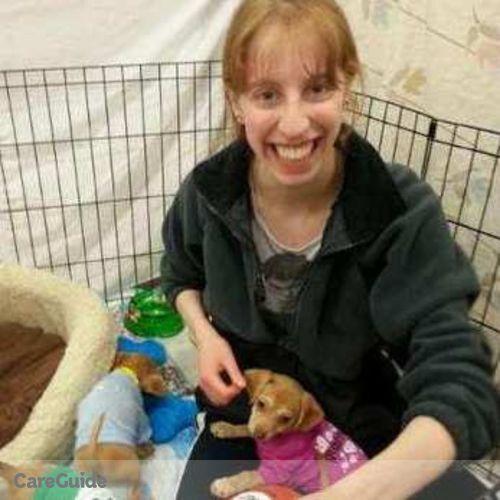 Pet Care Provider Nicole Tsingos's Profile Picture