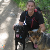 Dog Walker, Pet Sitter in Branford