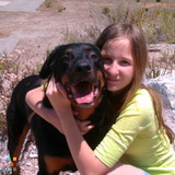Pet Sitter, Kennel in Burbank