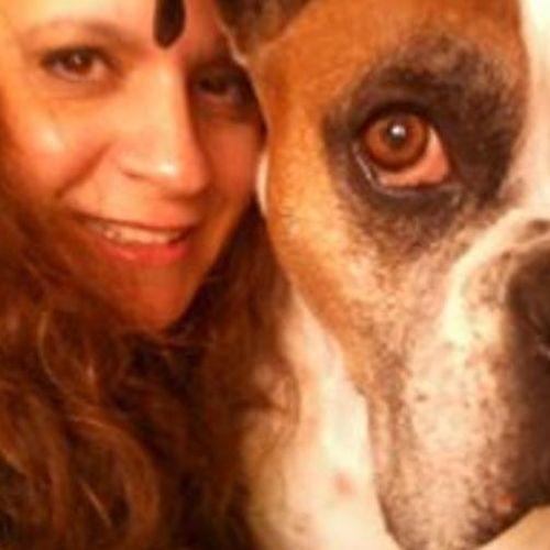 Pet Care Provider Cindi M's Profile Picture