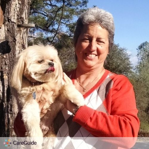 Pet Care Provider Diane H's Profile Picture