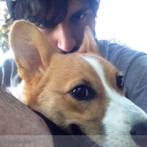 Pet Care Provider Jason Qiami's Profile Picture