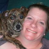 Veterinary Technician Experienced