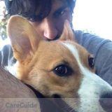 Dog Walker, Pet Sitter in San Leandro