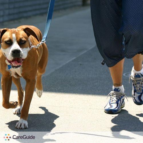 Pet Care Provider Fernando C's Profile Picture
