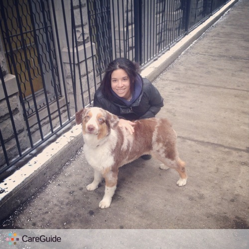 Pet Care Provider Kimi Amano's Profile Picture