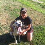 Kent Animal Caregiver Interested In Being Hired