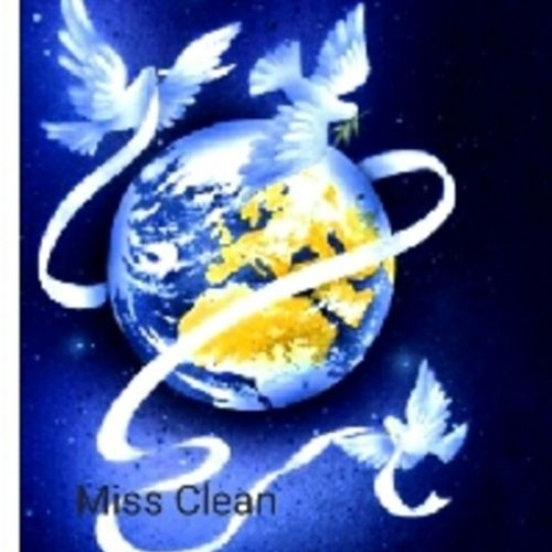 Housekeeper Provider Miss Clean's Profile Picture