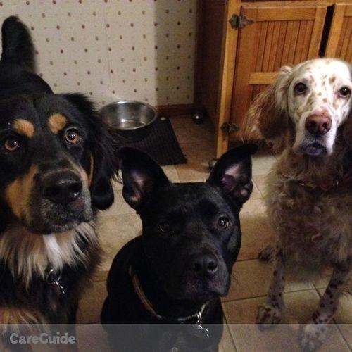Pet Care Provider Jessica Gaeta's Profile Picture