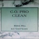 C.O. PRO CLEAN Residential and commercial services.