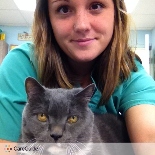 Pet Care Provider Megan B's Profile Picture