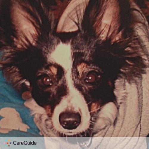Pet Care Provider Tammy V's Profile Picture
