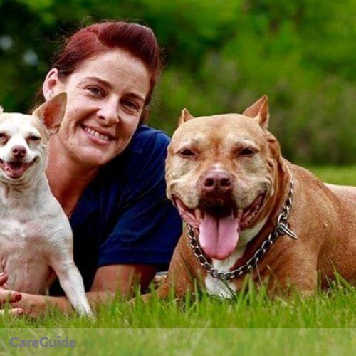 Pet Care Provider Allison Dunne's Profile Picture