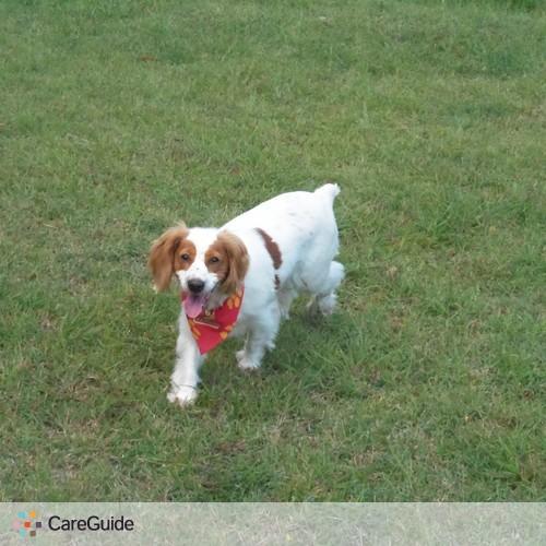 Pet Care Provider Andrea Garcia Puglia's Profile Picture