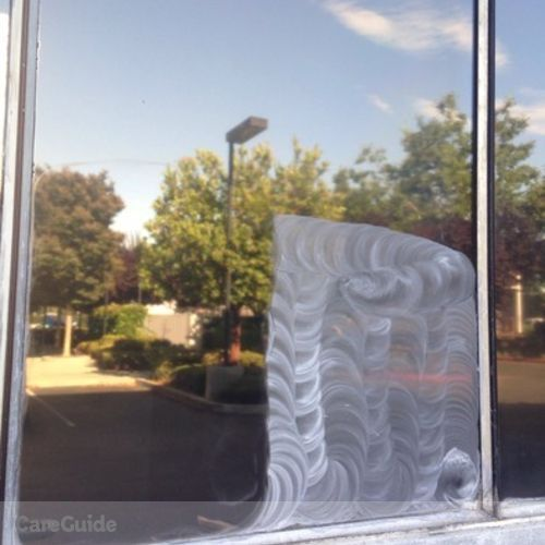 Window Cleanings