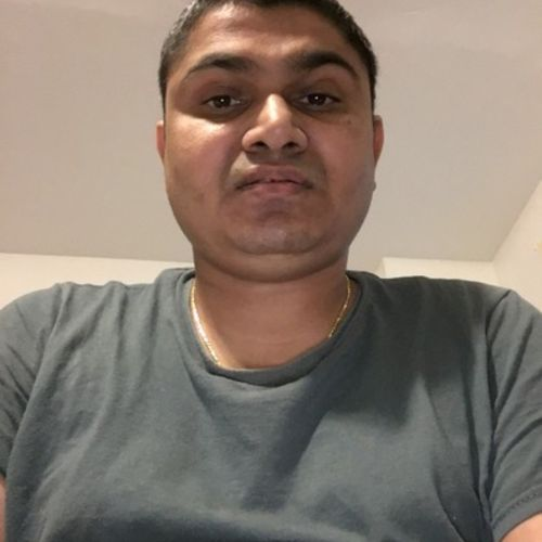 House Sitter Provider Lok A's Profile Picture