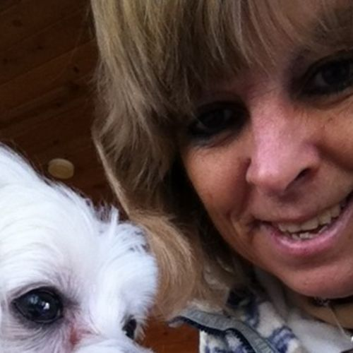Pet Care Provider Lynne Cheadle's Profile Picture