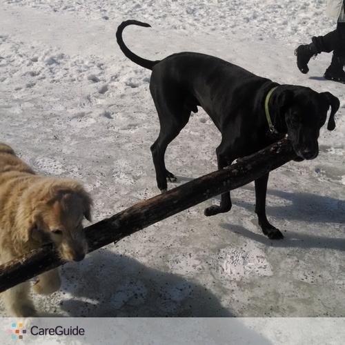 Pet Care Provider Nikita P's Profile Picture